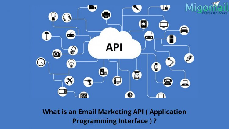 What is an Email Marketing API ( Application Programming Interface ) ?